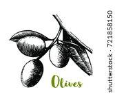 hand drawn olive branch sketch...   Shutterstock .eps vector #721858150