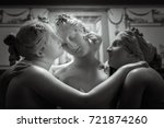 head and shoulders detail of... | Shutterstock . vector #721874260
