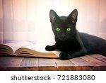 open book and black cat on... | Shutterstock . vector #721883080