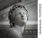 head and shoulders detail of... | Shutterstock . vector #721905223
