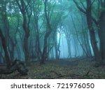 misty forest | Shutterstock . vector #721976050