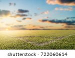 green grass field  soccer field | Shutterstock . vector #722060614