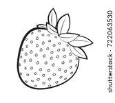 black outline strawberry fruit... | Shutterstock .eps vector #722063530