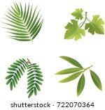 leaves of various species... | Shutterstock .eps vector #722070364
