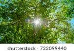 sunlight flare between green...   Shutterstock . vector #722099440
