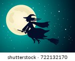 The Old Witch Flies On A...