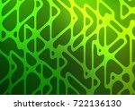 light green vector indian...   Shutterstock .eps vector #722136130