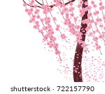 branches with pink flowers and... | Shutterstock . vector #722157790