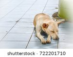 a lonely and innocent  thai... | Shutterstock . vector #722201710