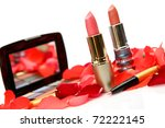 decorative cosmetics | Shutterstock . vector #72222145