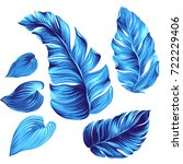set of vector tropical leaves.... | Shutterstock .eps vector #722229406
