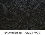 dark  spooky spider web over a... | Shutterstock . vector #722247973