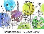 vector drawing wild plants ...   Shutterstock .eps vector #722253349