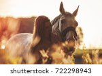 Stock photo woman with her horse at sunset autumn outdoors scene 722298943