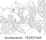 the bird of prey is an eagle on ... | Shutterstock .eps vector #722327164