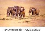 african elephant  south africa | Shutterstock . vector #722336539