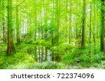 green woods  | Shutterstock . vector #722374096