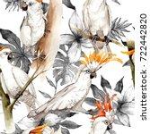 sky bird white macaw pattern in ... | Shutterstock . vector #722442820