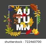autumn leaves maple  oak  rowan ... | Shutterstock .eps vector #722460700