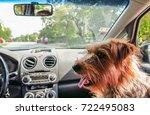 dog in car | Shutterstock . vector #722495083