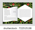 abstract vector layout... | Shutterstock .eps vector #722515138