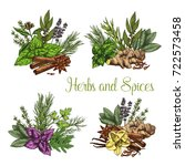 herbs and spices bunches of... | Shutterstock .eps vector #722573458