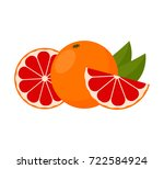 icon grapefruit.  whole fruit... | Shutterstock .eps vector #722584924