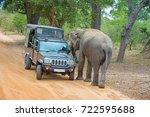yala  sri lanka   august 24 ... | Shutterstock . vector #722595688