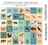 flat european flora and fauna... | Shutterstock .eps vector #722595724