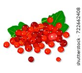 red currant isolated on white... | Shutterstock .eps vector #722662408