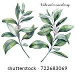 watercolor snowberry set. hand... | Shutterstock . vector #722683069