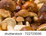 freshly harvested boletus...   Shutterstock . vector #722725030