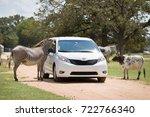 texas  usa  september 15 2017 ... | Shutterstock . vector #722766340