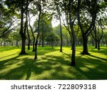 shadow of trees in the park  ... | Shutterstock . vector #722809318