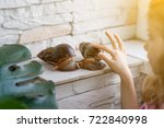 girl child playing with snail | Shutterstock . vector #722840998