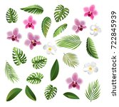 exotic flowers  tropical leaves.... | Shutterstock .eps vector #722845939