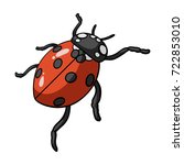 ladybug is an arthropod.the... | Shutterstock .eps vector #722853010