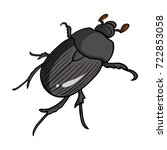 beetle is a coleopterous insect.... | Shutterstock .eps vector #722853058