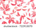 autumn creative floral...   Shutterstock . vector #722913070