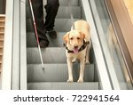 blind man with guide dog on... | Shutterstock . vector #722941564