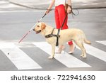 guide dog helping blind woman... | Shutterstock . vector #722941630