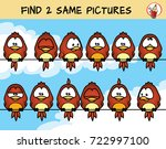 find two the same birds on the... | Shutterstock .eps vector #722997100