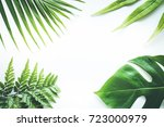 real tropical leaves set... | Shutterstock . vector #723000979