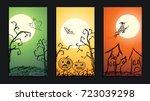 set of vector crayon drawn... | Shutterstock .eps vector #723039298