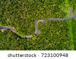 Aerial View Of Amazon...