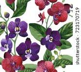 wildflower orchid flower... | Shutterstock . vector #723170719