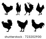 rooster silhouette  vector...