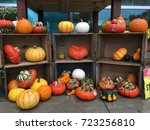 rare spooky pumpkins ready for...   Shutterstock . vector #723256810