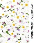 Flower Pattern Of Wildflowers....