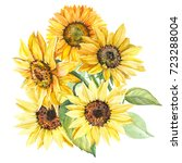 bouquet of sunflowers ... | Shutterstock . vector #723288004